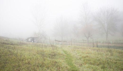 都道府県別の年間霧日数ランキング